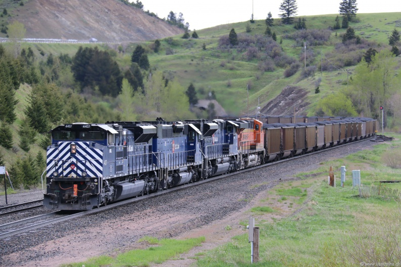 MRL4407-MAY17-MUIR,MT.JPG